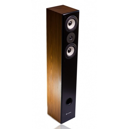 Martin Logan ElectroMotion IC
